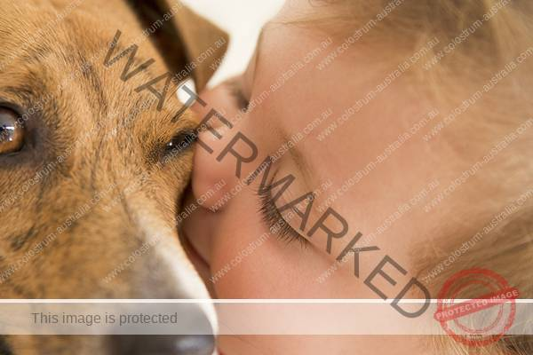 Young child kissing dog protect them with alpha lipid lifeline colostrum